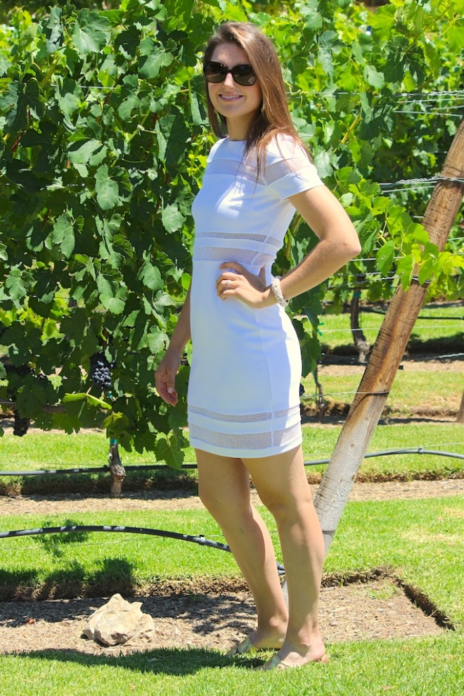 bailey44 white dress